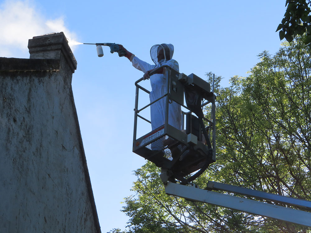 Dusting chimney for bees
